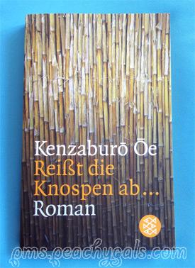 cover kenzaburō ōe - reißt die knospen ab...