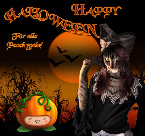 happy halloween - katze im hexenkostüm und pfirsich im kürbiskostüm